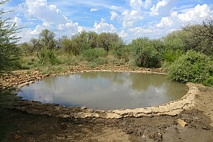 Hunters Provide Water to Save Game in Mafikeng Area